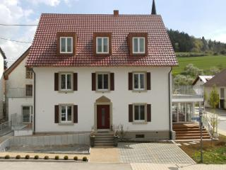 Single Room in Hüfingen - 161 sqft, modern, cozy, bright (# 4851) - Tuttlingen vacation rentals