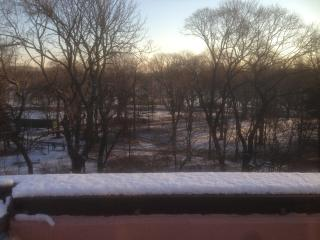Sunny Duplex on Prospect Park - Brooklyn vacation rentals