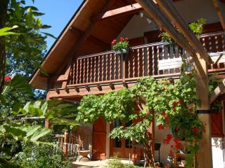 Beautiful house in the High Pyrenees - Bagneres-de-Bigorre vacation rentals