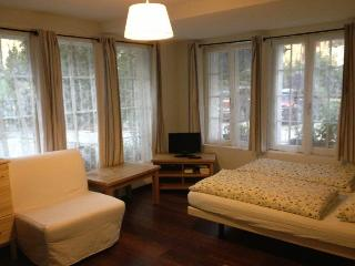 CityChalet historic Studio Apartment - Habkern vacation rentals