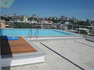 Ocean View  Apartment for rent In Santo Domingo - Santo Domingo vacation rentals