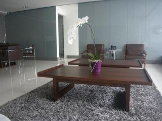 Luxury ocean view  2 bedrooms apartment for rent - Santo Domingo Province vacation rentals