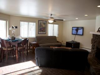 AUGUST AVAILABLE! ASPEN! - Aspen vacation rentals