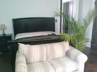 SPECIAL Washington Park Victorian Suite DEAL - North Plainfield vacation rentals