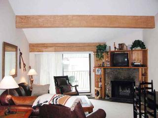 BC West O-4 w/ FREE Skier Shuttle - Northwest Colorado vacation rentals