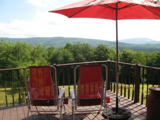 Fabulous, Private, Contemporary Paradise! - Downsville vacation rentals