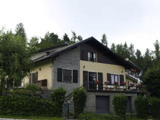 Bella Baita - Italian Alps Retreat - Pinasca vacation rentals