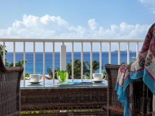 Affordable, Elegant, Walk to town. Just Perfect! - Cruz Bay vacation rentals