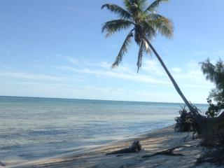 Private Paradise: Townhouse 10min walk to beach... - New Providence vacation rentals