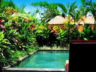 Romi Villa... Get Comfortably Lost in Ricefields - Canggu vacation rentals