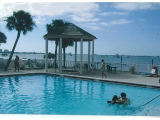 Florida Beach Vacation Rental - St Petersburg - Saint Petersburg vacation rentals