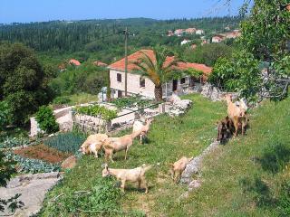 FARMER'S HOUSE CAVTAT - Cilipi vacation rentals