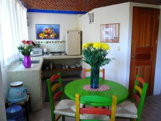 Upstairs Efficiency Apartment - San Miguel de Allende vacation rentals