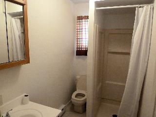 432 Pine Knoll~ Lake Harmony 5 Bedroom~Sleeps 12 - Lake Harmony vacation rentals