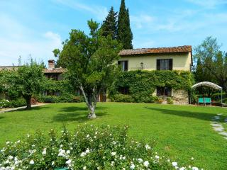 Lupinati 1 - Greve in Chianti vacation rentals