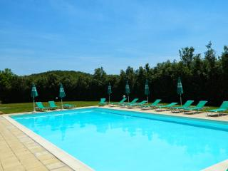 Beringhe Cortino - Colle di Val d'Elsa vacation rentals