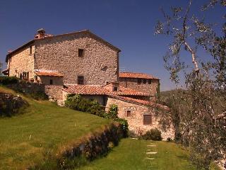 Gualdo Oliveta - Radda in Chianti vacation rentals