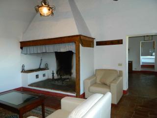 Guidi - Castellina In Chianti vacation rentals