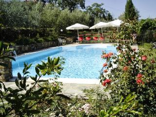 Villa Pergine - Pergine Valdarno vacation rentals