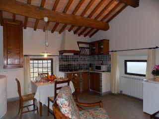 Meleto Limonaia 3 - Gaiole in Chianti vacation rentals