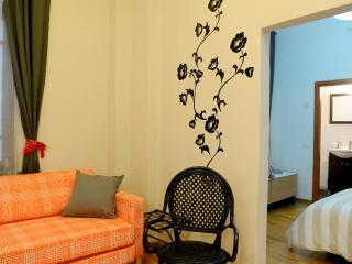 Eclectic Apartment  - One bed Room - Rehovot vacation rentals