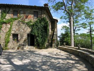 Il Sellaio - Castiglion Fosco vacation rentals