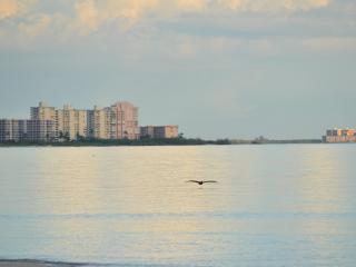 Adorable Beach Apartment - Florida South Central Gulf Coast vacation rentals
