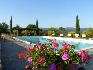 Chalet In Tuscany - 2 People - Massa Marittima vacation rentals