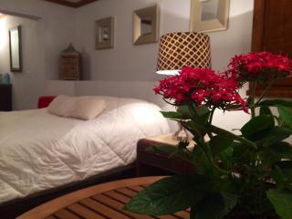 Cozy Studio in Puntas Hillside, Wi-Fi & A/C - Rincon vacation rentals