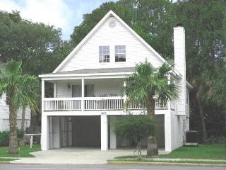 1203 Butler Avenue - A Tropical Retreat Just One Block From the Beach - FREE Wi-Fi - Georgia Coast vacation rentals