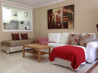 Práctico apto 1 hab Martianez(wifi) - Tenerife vacation rentals