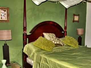 B&B La Pantera Negra Green Room - Merida vacation rentals