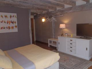 Chambres d'hôtes du Domaine de Jacquelin - Loire Valley vacation rentals