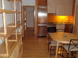 Cozy and quiet apartment on near Granvalira. - Andorra vacation rentals