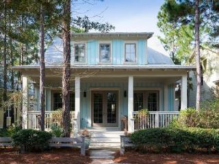 235 Lake Forest Drive - Watercolor vacation rentals