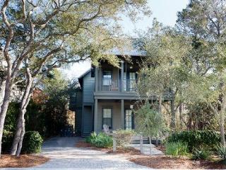 88 Bluejack Street - Watercolor vacation rentals