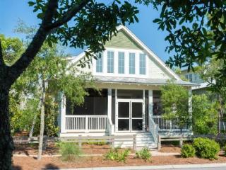 128 Needlerush Drive - Watercolor vacation rentals