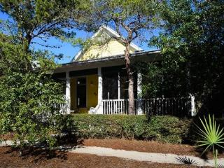 133 Silver Laurel Way - Watercolor vacation rentals