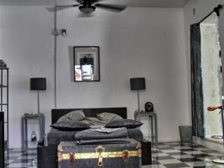 B&B La Pantera Negra Black&White Room - Merida vacation rentals