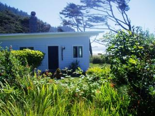 Ocean Front Cabin near Cannon Beach, OR - Seaside vacation rentals