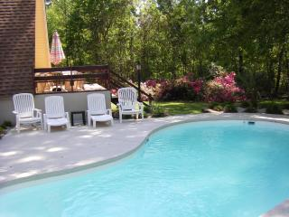 Lake Marion Waterfront House w/ Dock, Private Pool - Vance vacation rentals