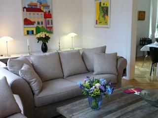 Large luxurious Copenhagen apartment in City - Denmark vacation rentals