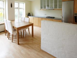 Big flat in down town Reykjavik - Reykjavik vacation rentals