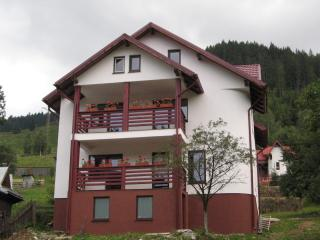 Villa Cetina, Bucovina - Painted Monasteries' Land - Suceava vacation rentals