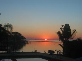 Paradise Living in Florida - complete privacy - Saint Petersburg vacation rentals