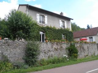 B&B between Beaune and Chalon-sur-Saone, in the middle of vineyards - Saint-Loup-de-Varennes vacation rentals