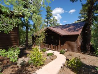 Torreon Cabin with Huge Private Deck, Sleeps 7, FREE WiFi - Show Low vacation rentals