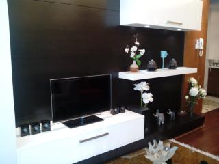 Fully Furnished 2BR Condo at BGC w Wifi - Taguig City vacation rentals
