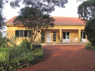 Quinta Villa-luxury, ocean and country views - Vila Franca do Campo vacation rentals