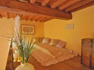 Elegant One bedroom apartment on the ground floor - Lucca vacation rentals